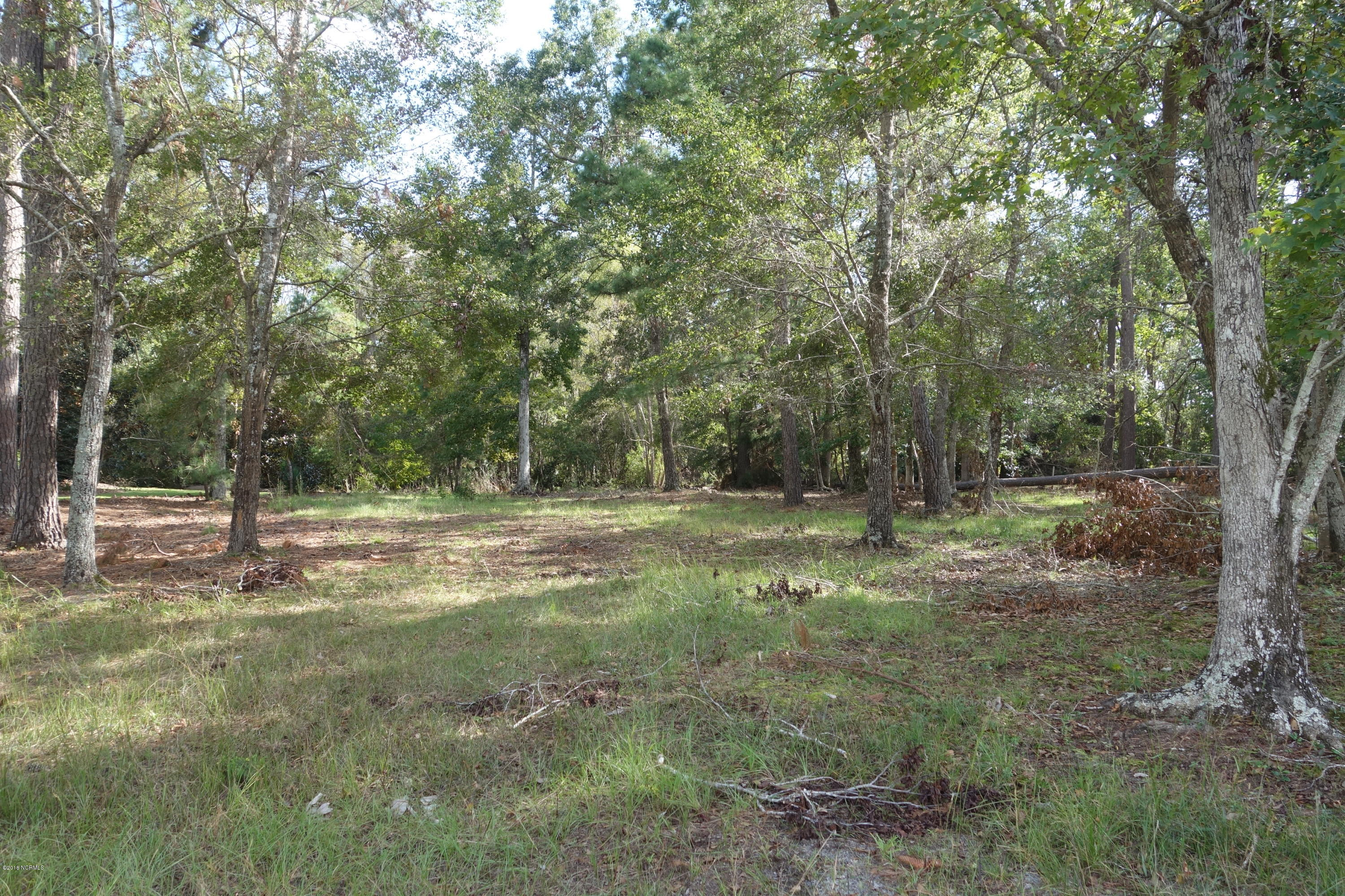 Carolina Plantations Real Estate - MLS Number: 100137118
