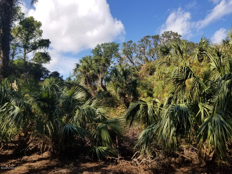 Carolina Plantations Real Estate - MLS Number: 100137181