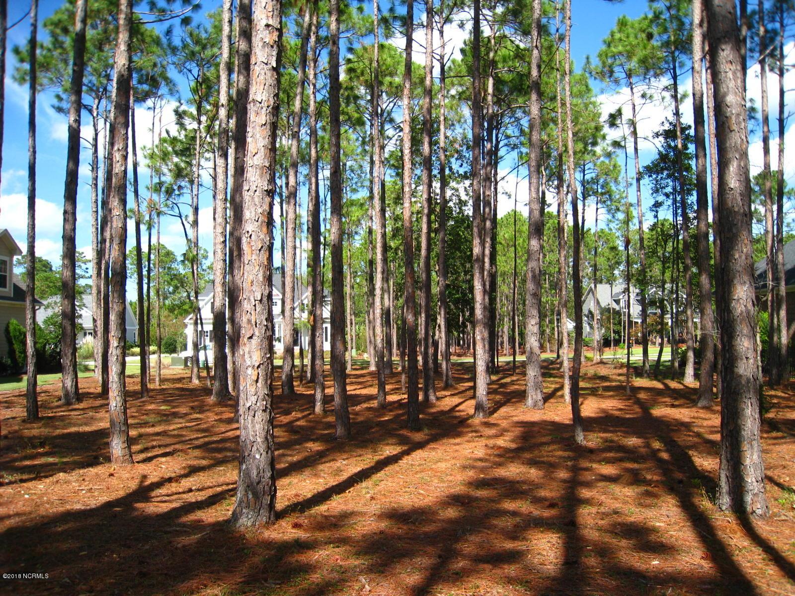 Carolina Plantations Real Estate - MLS Number: 100094597