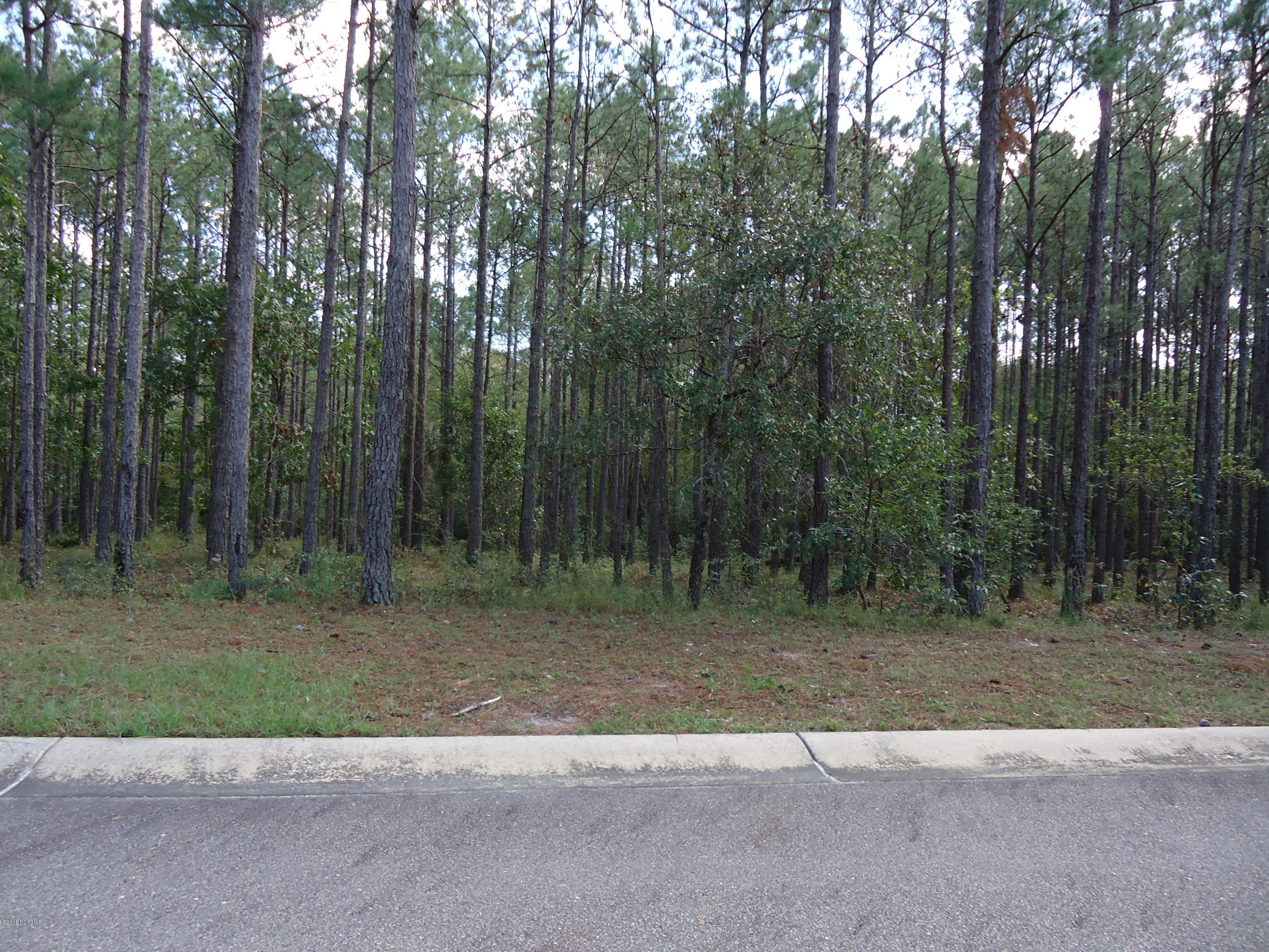 Carolina Plantations Real Estate - MLS Number: 100137223