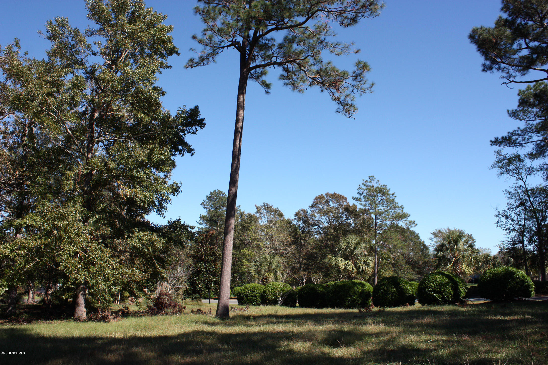 Carolina Plantations Real Estate - MLS Number: 100137545