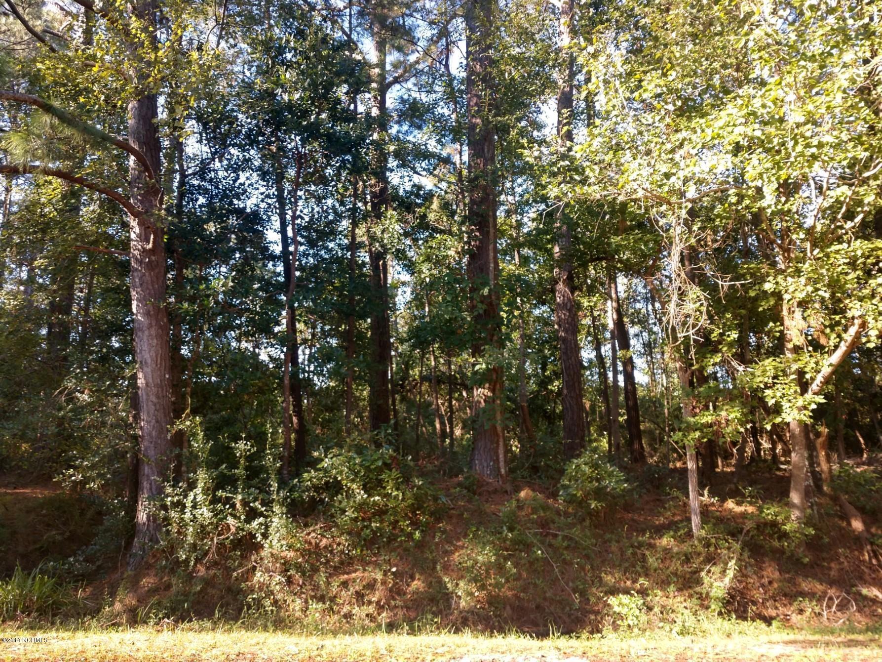Carolina Plantations Real Estate - MLS Number: 100137863