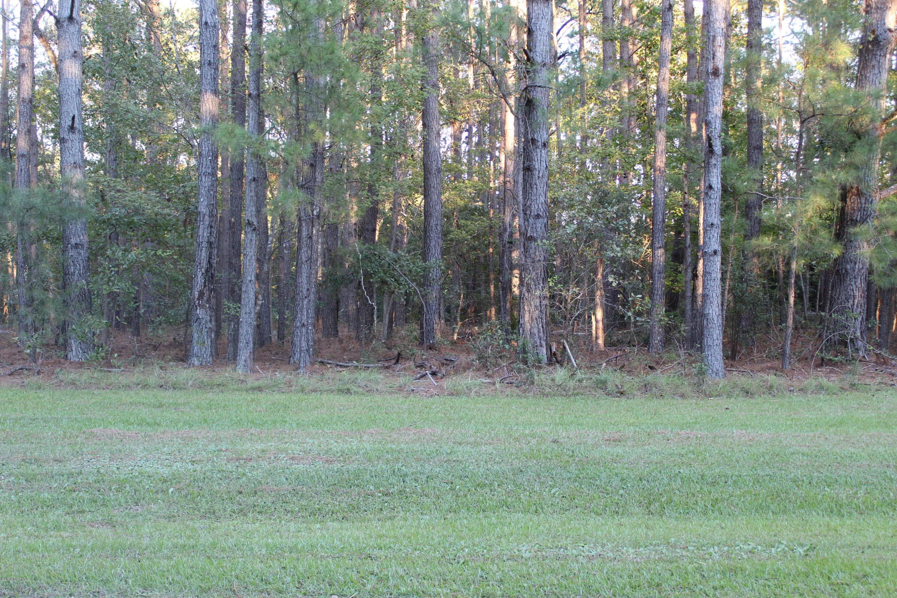 Carolina Plantations Real Estate - MLS Number: 100138338