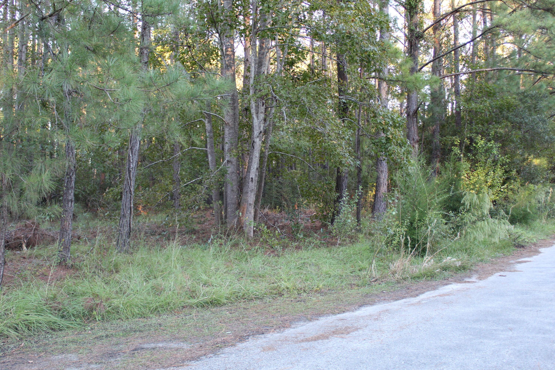 Carolina Plantations Real Estate - MLS Number: 100138342