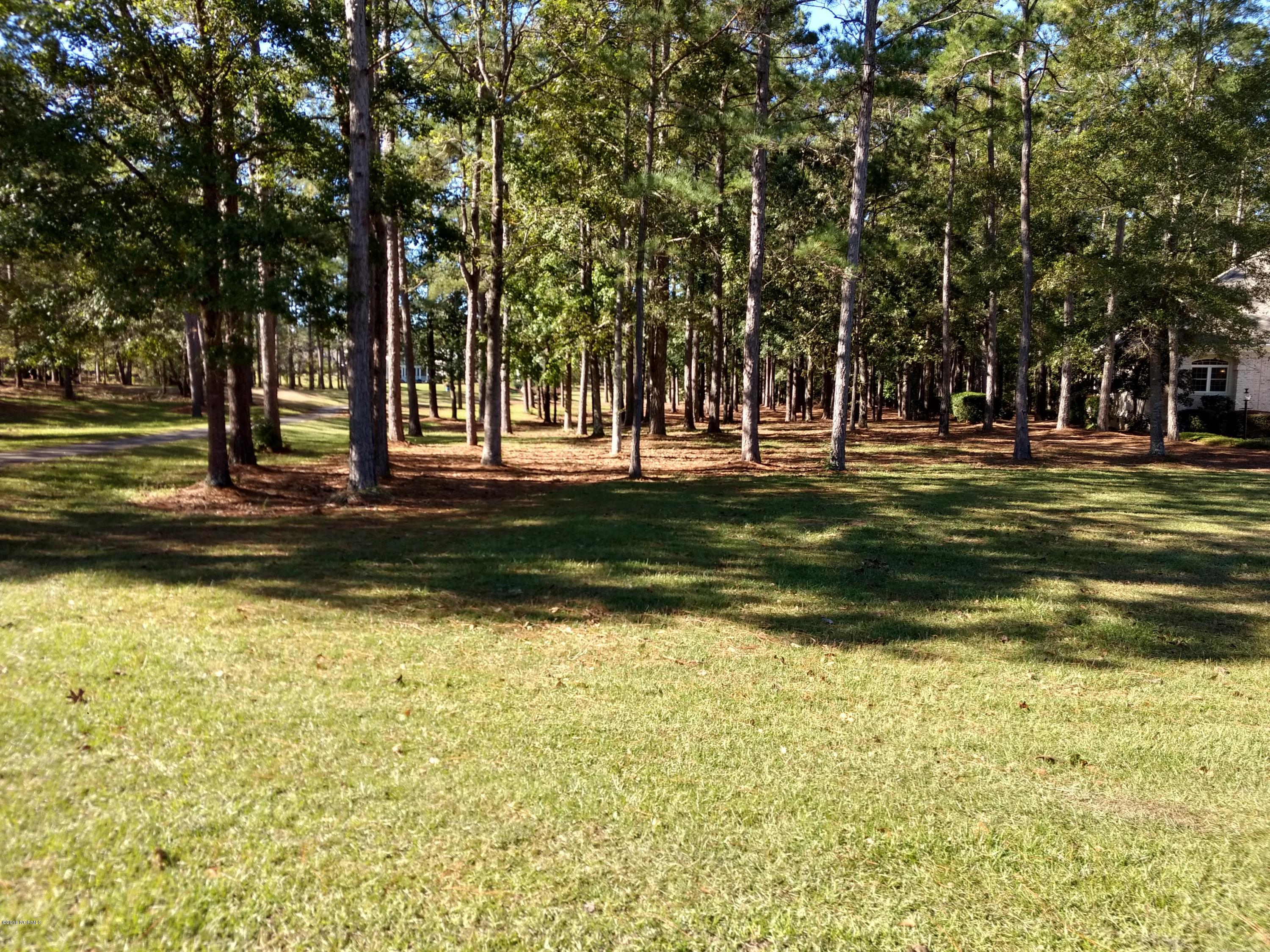 513 Cliffside Point, Ocean Isle Beach, North Carolina 28469, ,Residential land,For sale,Cliffside,100138411