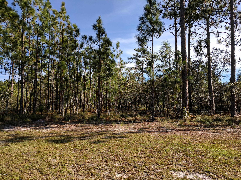 Carolina Plantations Real Estate - MLS Number: 100138576