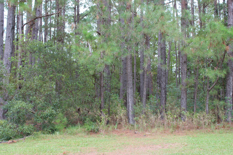 Carolina Plantations Real Estate - MLS Number: 100138648