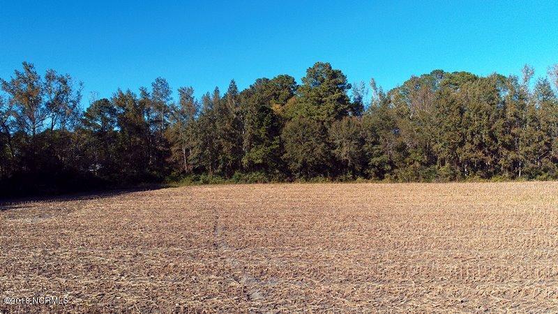 Carolina Plantations Real Estate - MLS Number: 100138939