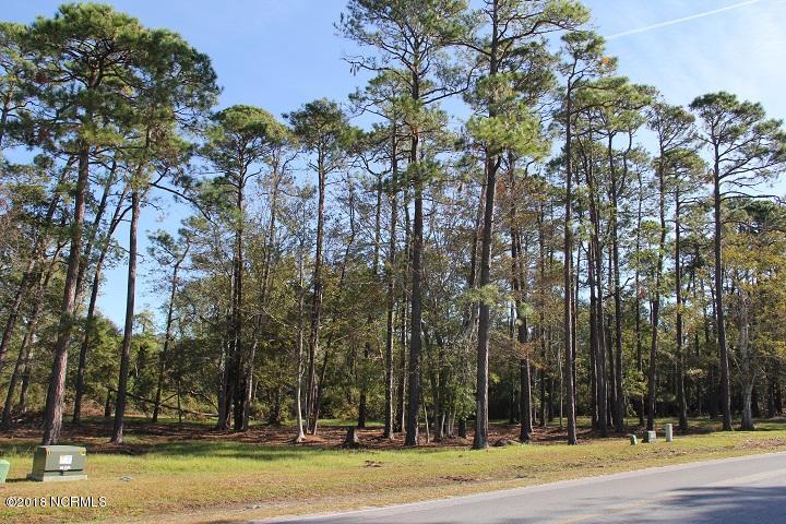 Carolina Plantations Real Estate - MLS Number: 100138949