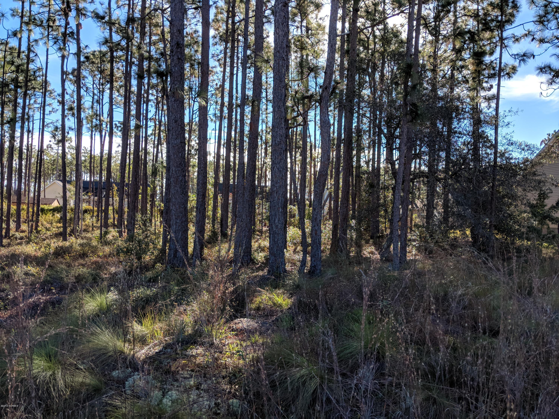 Carolina Plantations Real Estate - MLS Number: 100138871