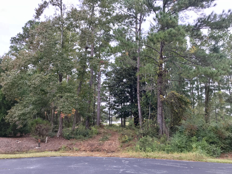 Carolina Plantations Real Estate - MLS Number: 100139729