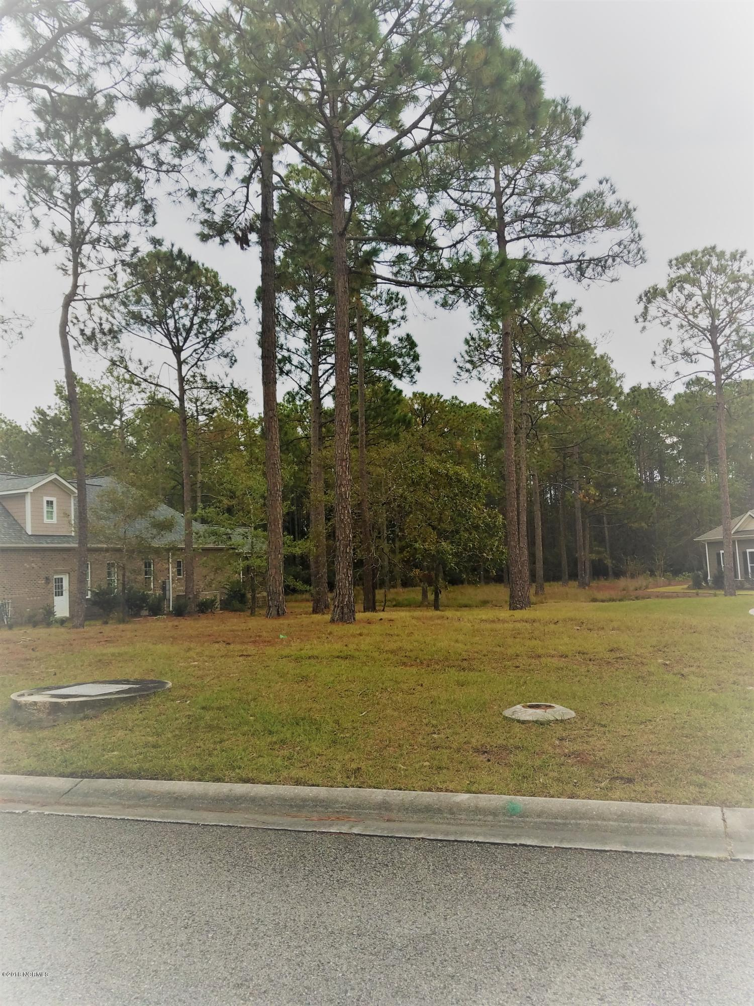 Carolina Plantations Real Estate - MLS Number: 100139570