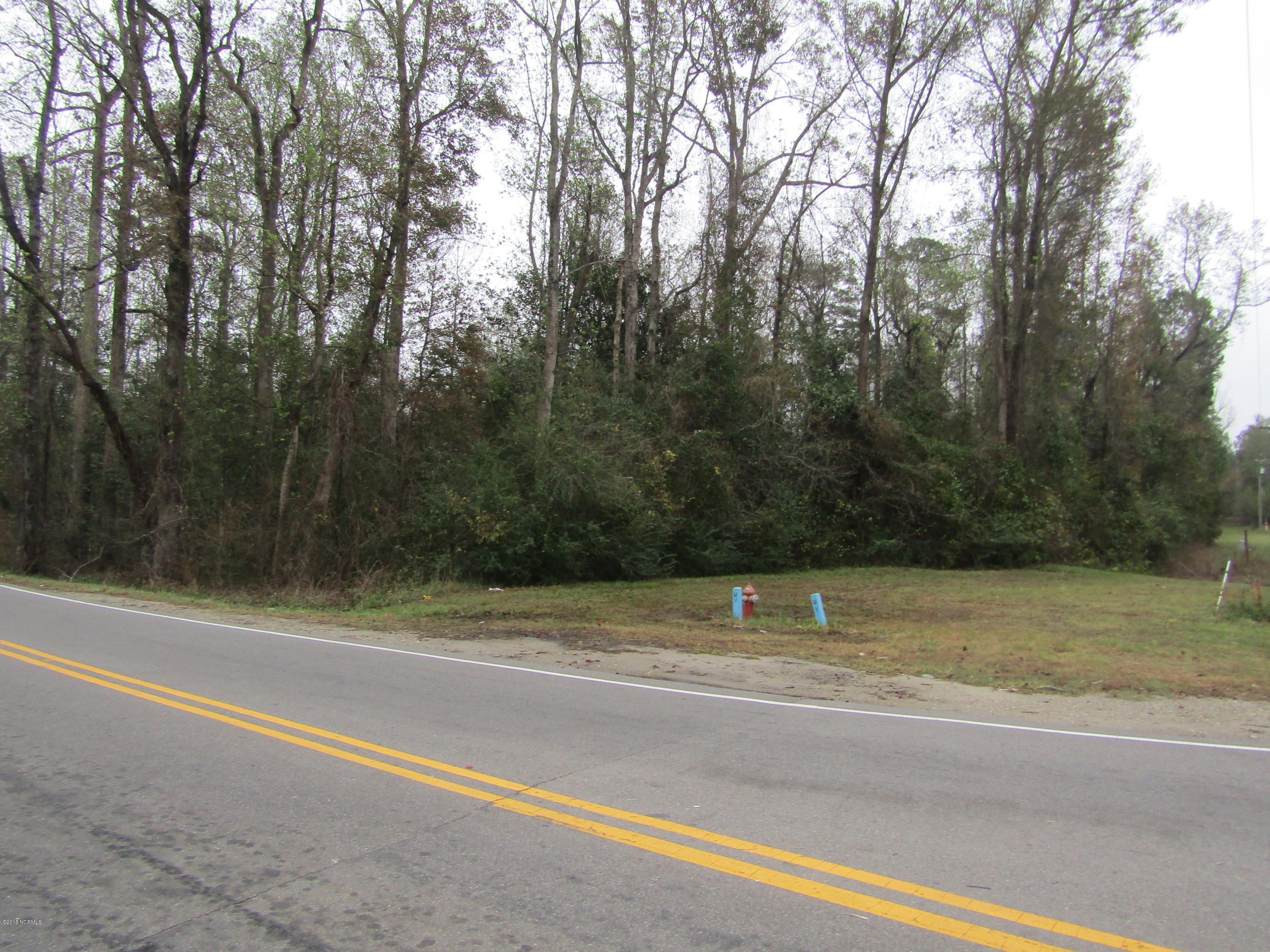 1.5ac 5530 Us Highway 117, Burgaw, North Carolina 28425, ,Residential land,For sale,Us Highway 117,100139735
