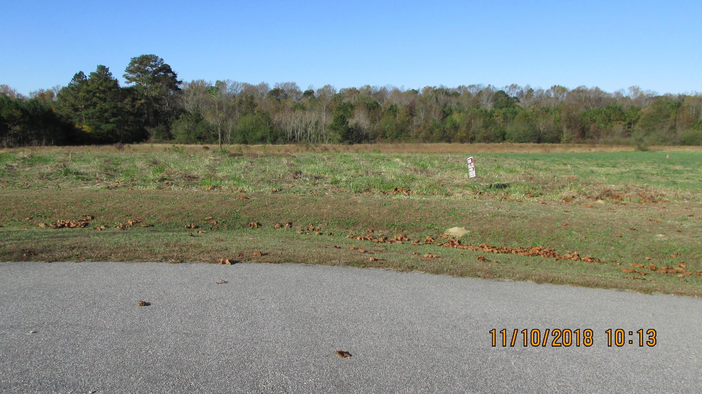1042 Cobble Ridge Road, Nashville, North Carolina 27856, ,Residential land,For sale,Cobble Ridge,100139746