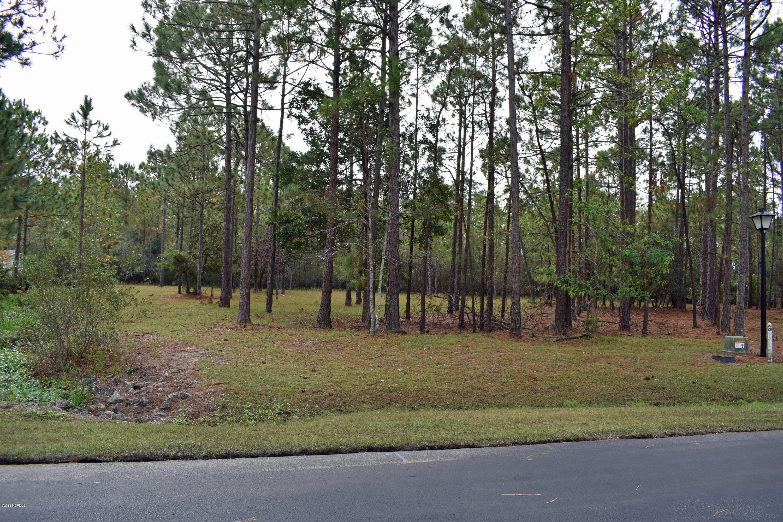 Carolina Plantations Real Estate - MLS Number: 100139577