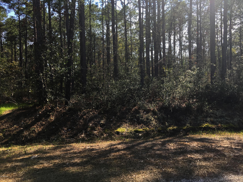 Carolina Plantations Real Estate - MLS Number: 100140284