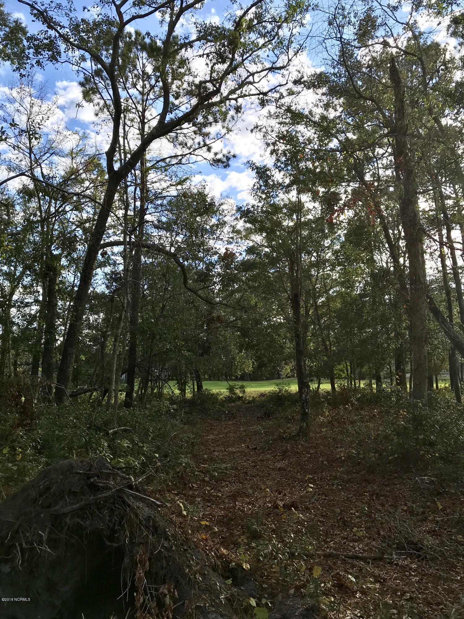 Carolina Plantations Real Estate - MLS Number: 100141457
