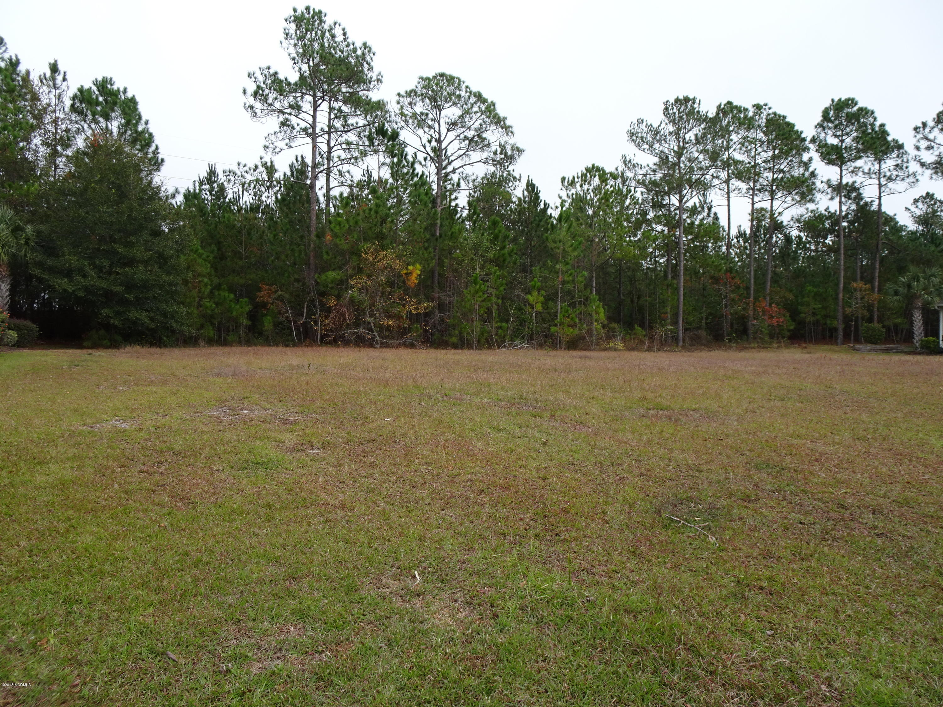 Carolina Plantations Real Estate - MLS Number: 100141326