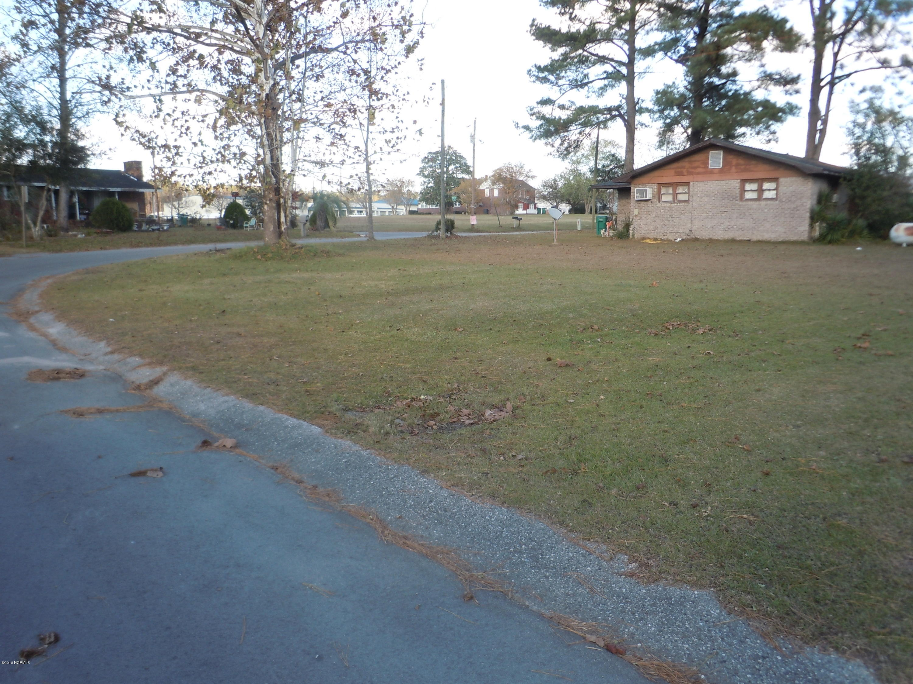 203 Pete Circle, Tabor City, North Carolina 28463, ,Residential land,For sale,Pete,100141371