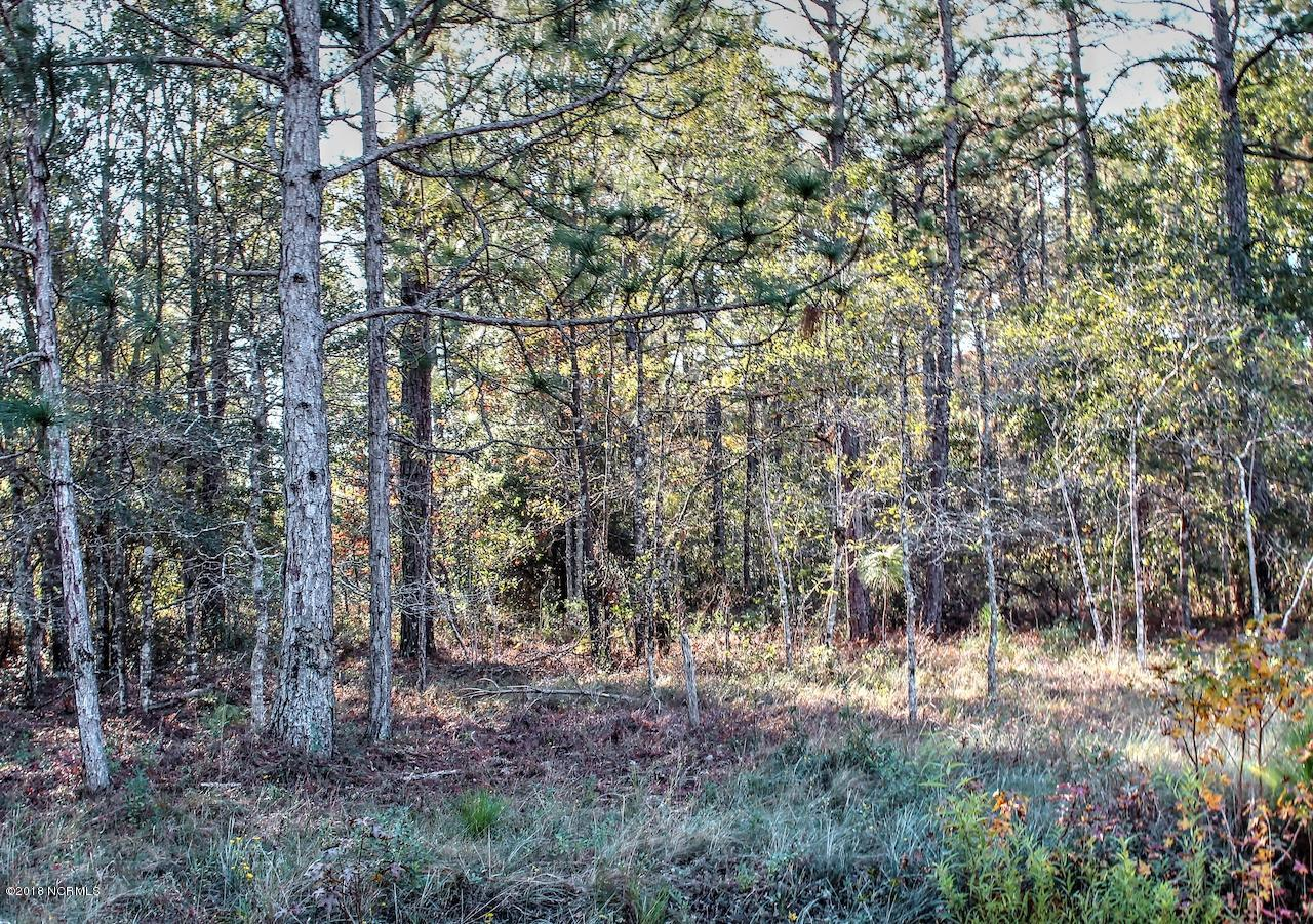 3 Deer Run Road, Carolina Shores, North Carolina 28467, ,Residential land,For sale,Deer Run,100141565