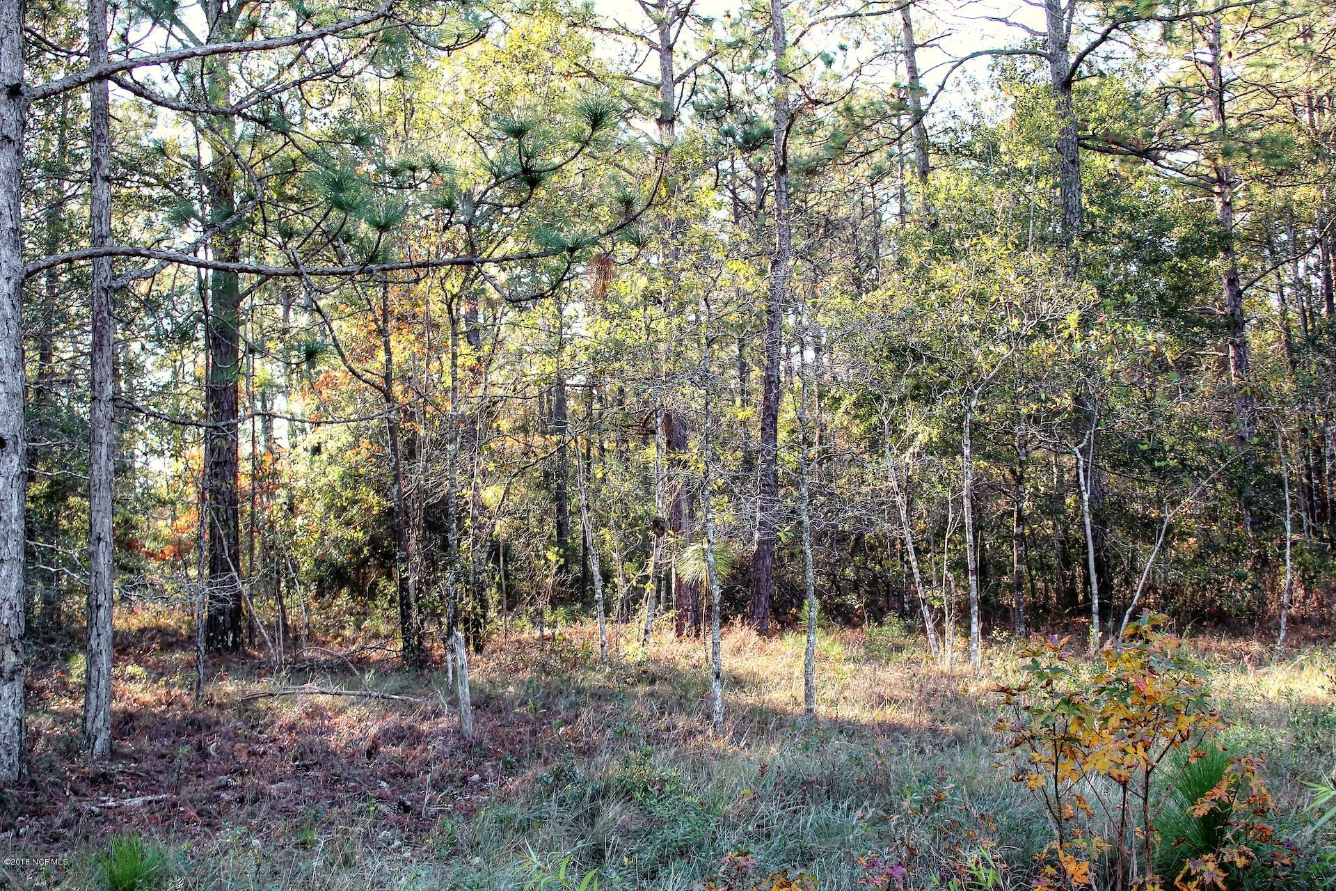 Carolina Plantations Real Estate - MLS Number: 100141565