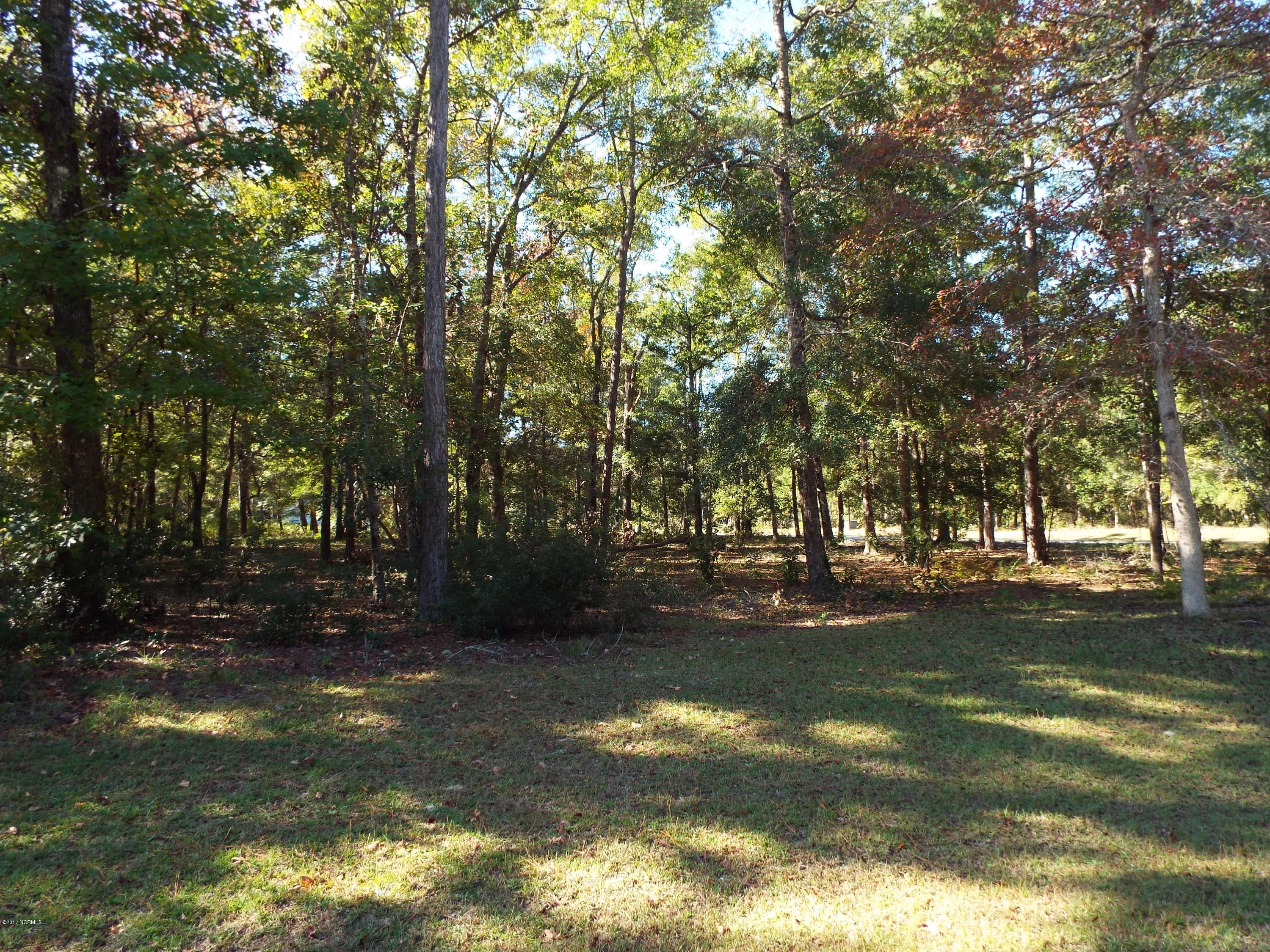 Carolina Plantations Real Estate - MLS Number: 100141635