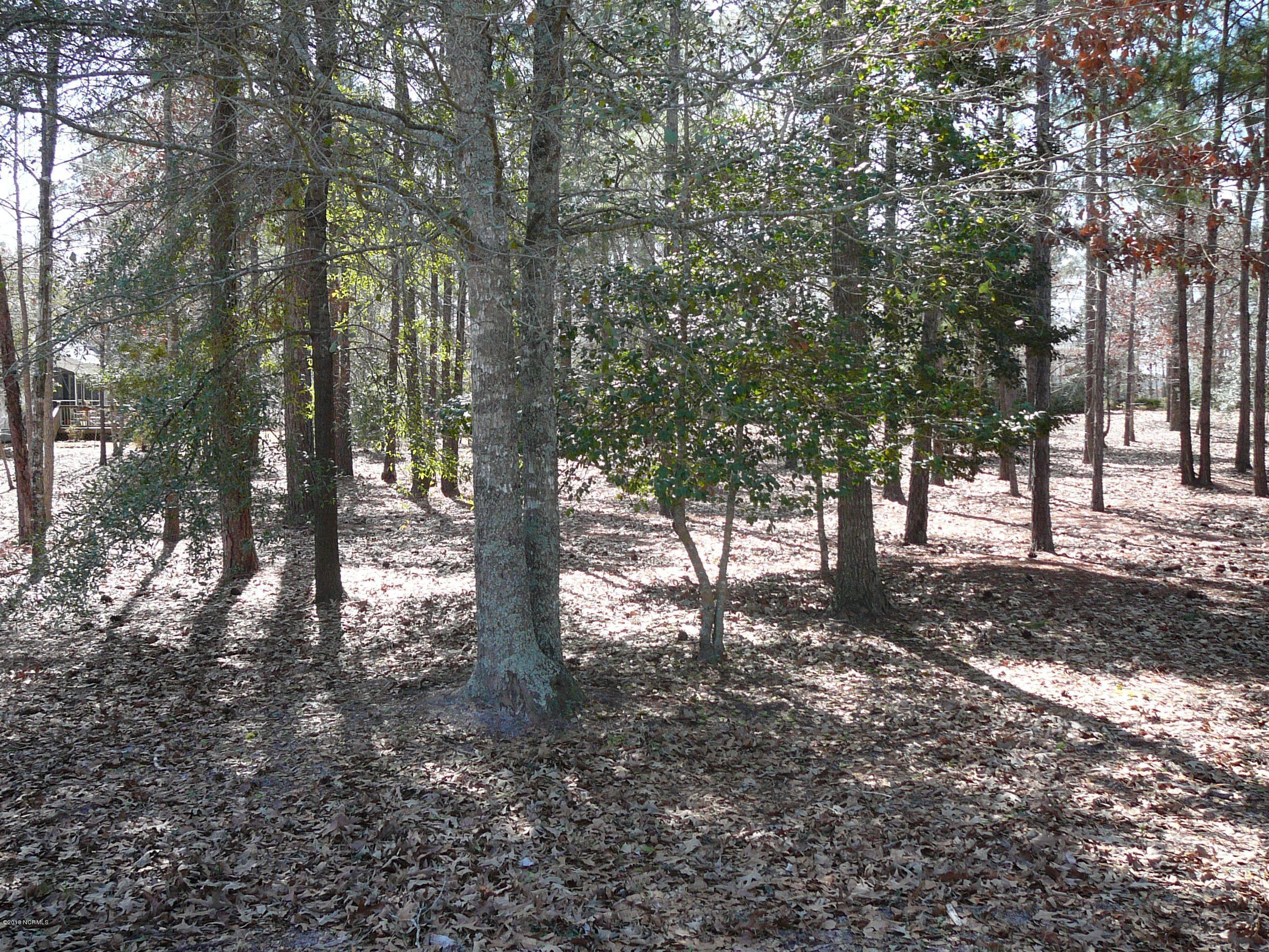 Carolina Plantations Real Estate - MLS Number: 100141680