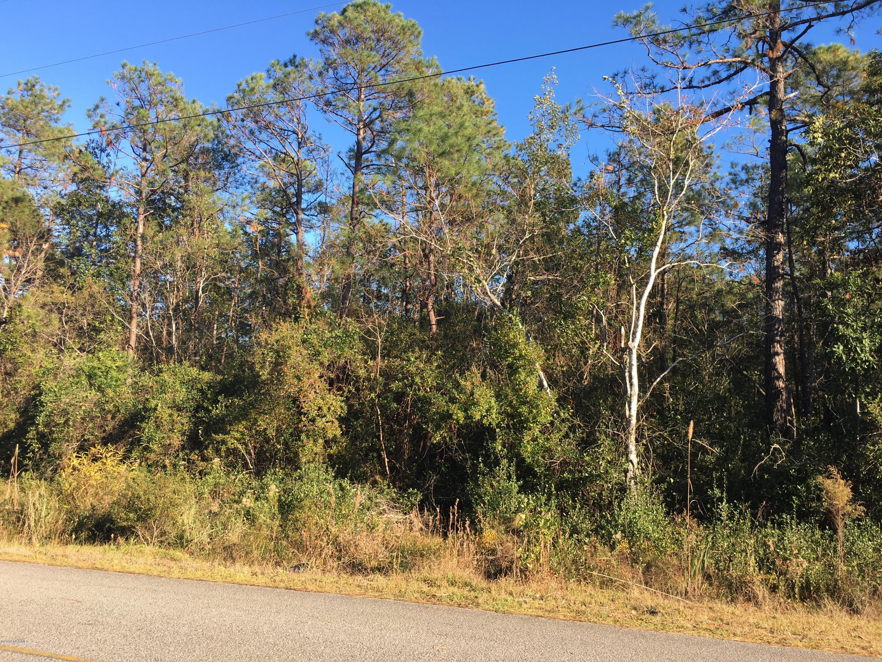 221 South Shore Drive, Southport, North Carolina, ,Residential land,For sale,South Shore,100141745