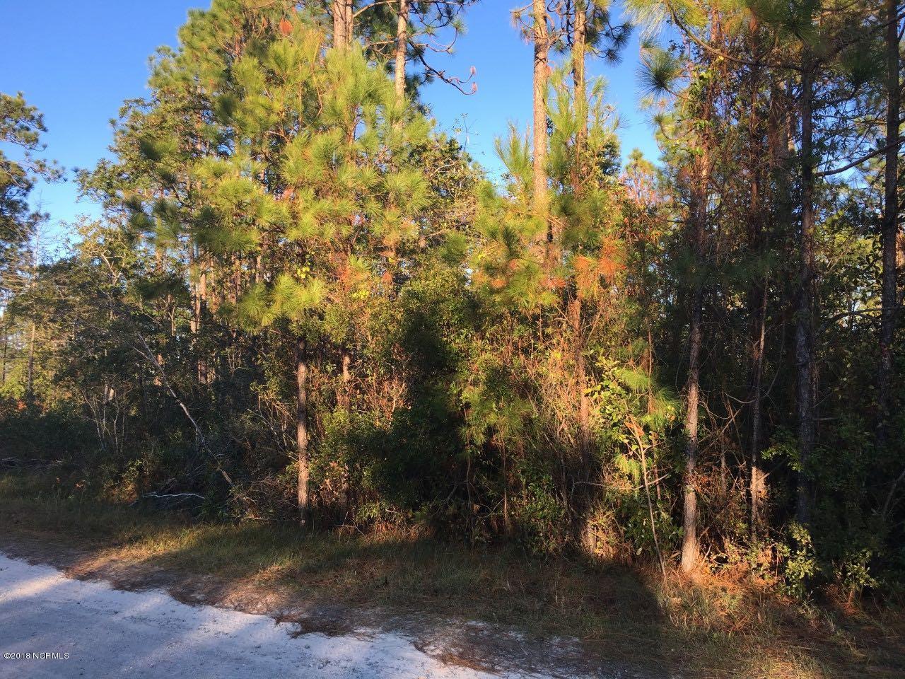 Carolina Plantations Real Estate - MLS Number: 100141749