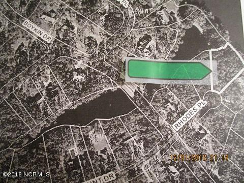 Lot 4 Rhodes Place, Clinton, North Carolina 28328, ,Wooded,For sale,Rhodes,100141878
