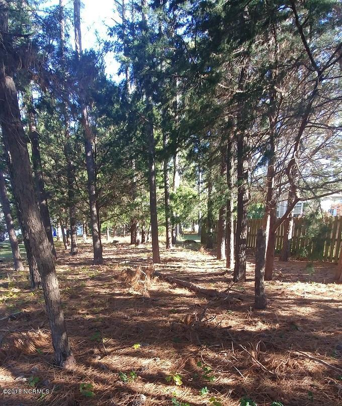 Carolina Plantations Real Estate - MLS Number: 100142035