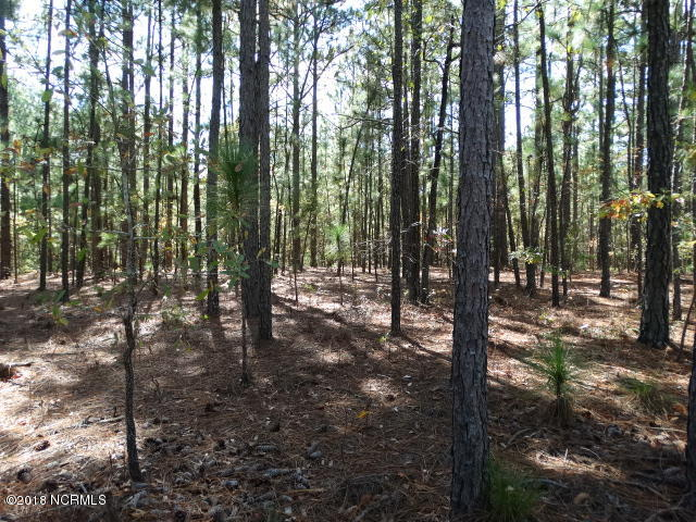40 Sand Stone Lane, Wagram, North Carolina, ,Residential land,For sale,Sand Stone,100142271