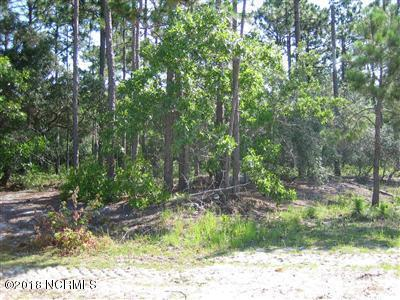 Carolina Plantations Real Estate - MLS Number: 100142423