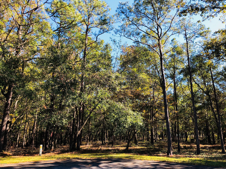 Carolina Plantations Real Estate - MLS Number: 100142754