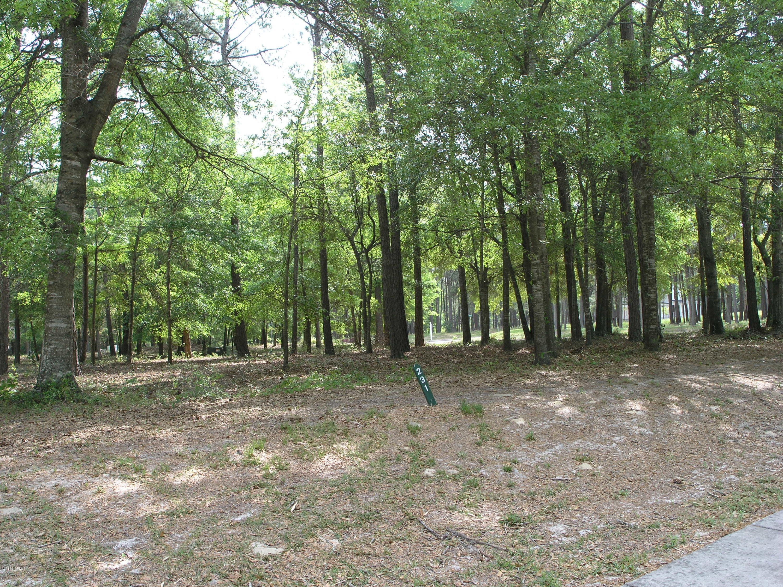 Carolina Plantations Real Estate - MLS Number: 100142812