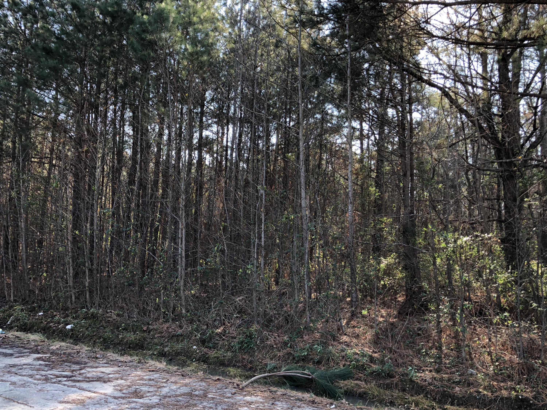 0 Highway 97, Hobgood, North Carolina, ,Undeveloped,For sale,Highway 97,100142855