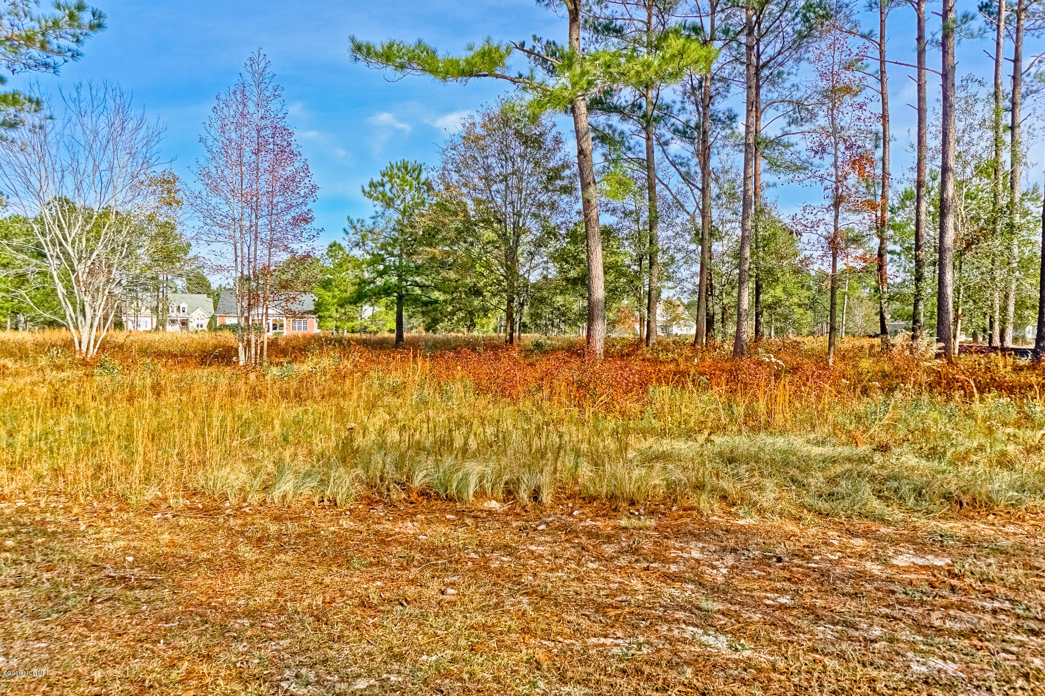 Carolina Plantations Real Estate - MLS Number: 100143236
