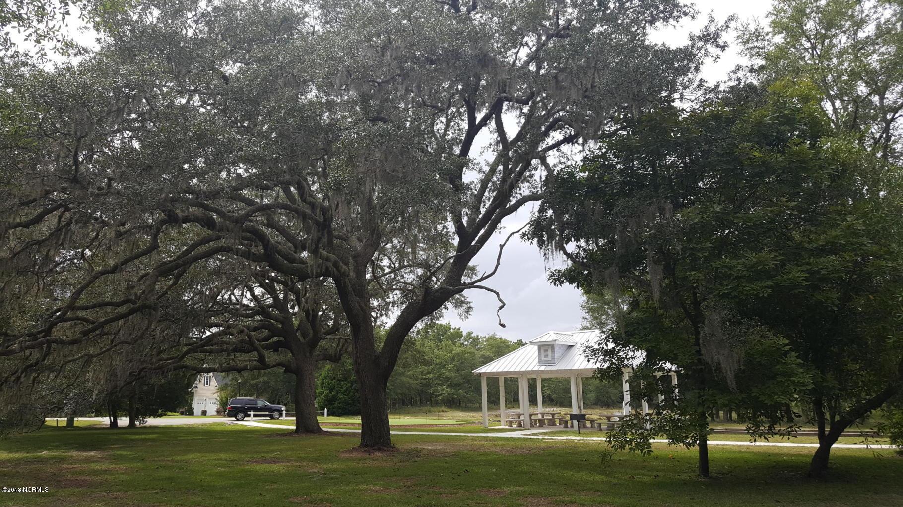 Carolina Plantations Real Estate - MLS Number: 100143346
