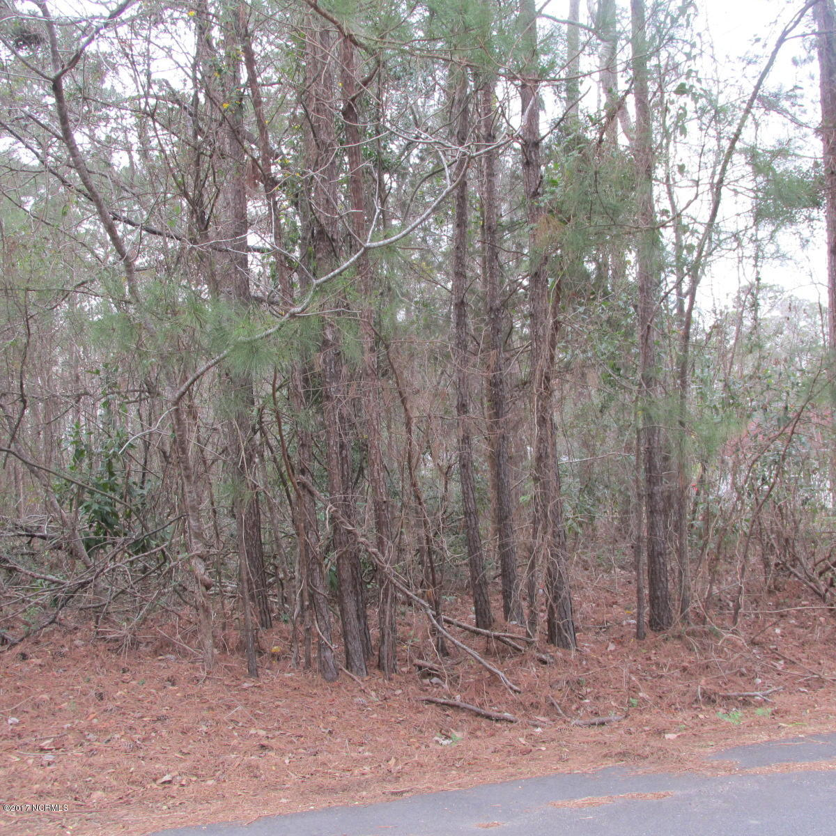 Carolina Plantations Real Estate - MLS Number: 100143900