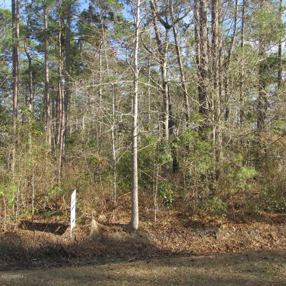 Carolina Plantations Real Estate - MLS Number: 100143898
