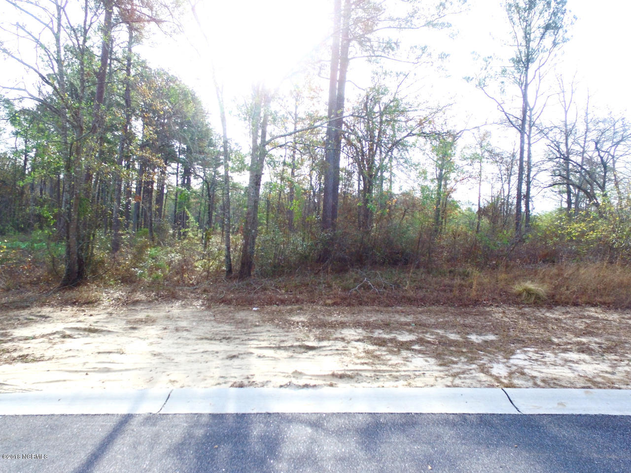 Carolina Plantations Real Estate - MLS Number: 100141931