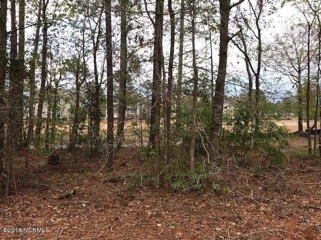 1509 Grandiflora Drive, Leland, North Carolina 28451, ,Residential land,For sale,Grandiflora,100143998