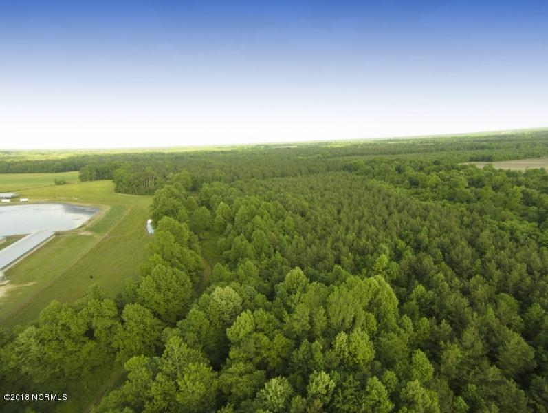 0 Cutchin Farm Road, Tarboro, North Carolina 27886, ,Timberland,For sale,Cutchin Farm,100147845
