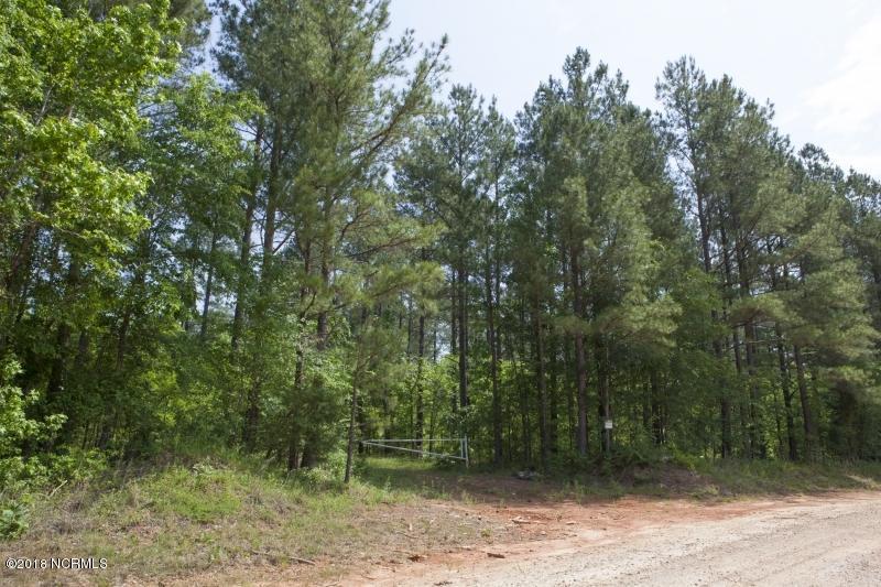 0 Earnest Turner Road, Warrenton, North Carolina 27589, ,Timberland,For sale,Earnest Turner,100147848