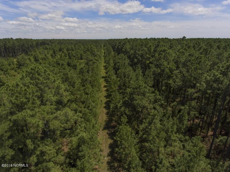 0 Makleyville Road, Scranton, North Carolina 27875, ,Timberland,For sale,Makleyville,100147856