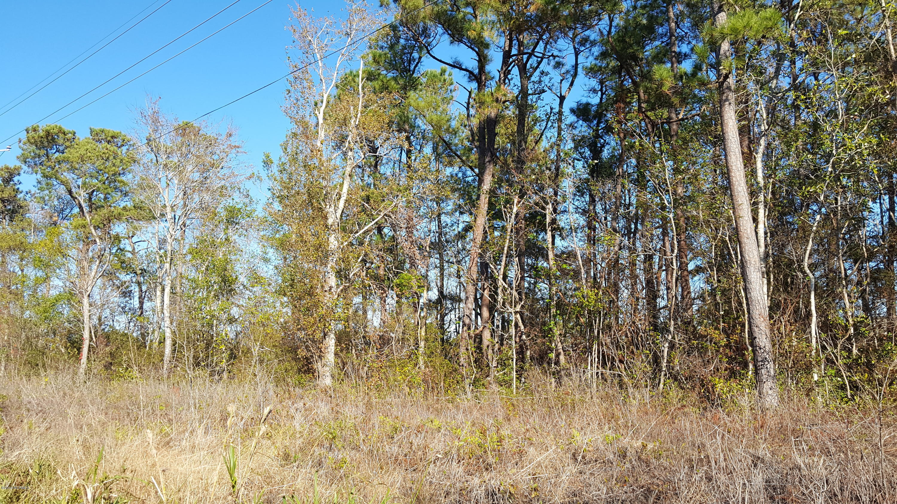 8551 River Road, Wilmington, North Carolina 28412, ,Residential land,For sale,River,100144292