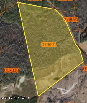 2380 Mollie Road, Clarendon, North Carolina 28432, ,Agriculture,For sale,Mollie,100144497