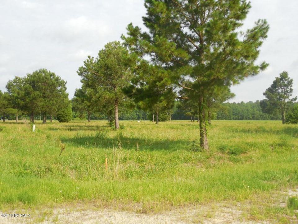 8 Ferrell Vance Lane, Pinetown, North Carolina 27865, ,Residential land,For sale,Ferrell Vance,100144596