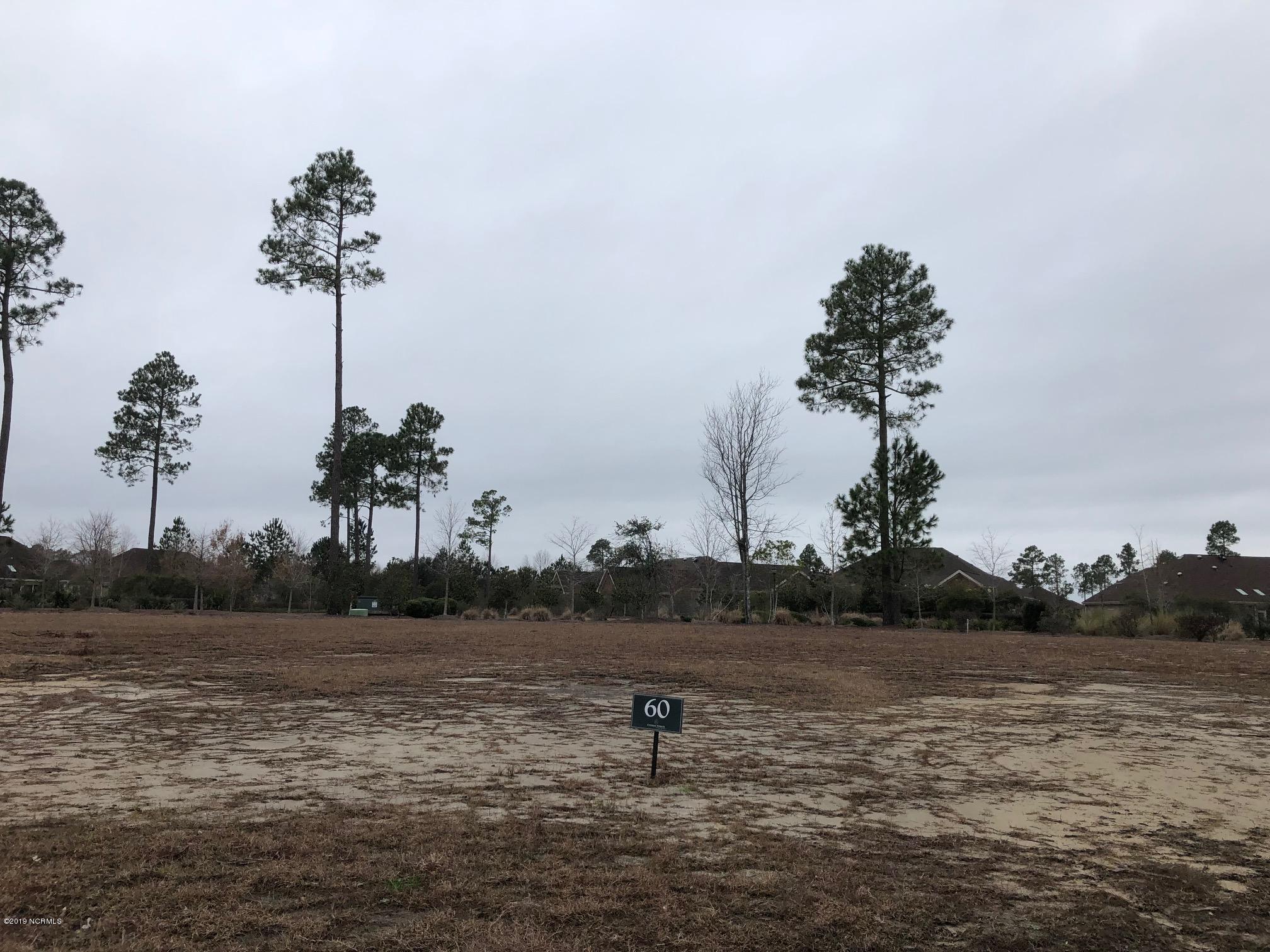 Carolina Plantations Real Estate - MLS Number: 100144658