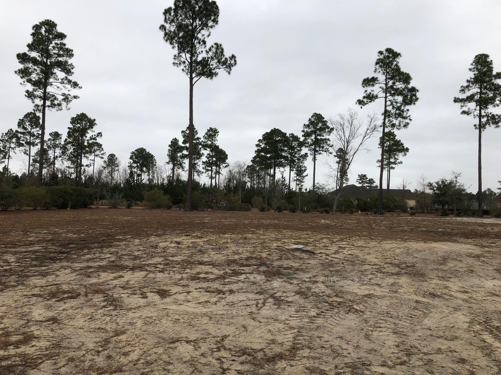 Carolina Plantations Real Estate - MLS Number: 100144660